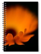 Gerbera Fire Spiral Notebook
