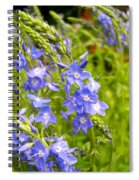 Germander Speedwell Spiral Notebook