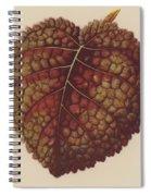 Gesnera Cinnabarina Spiral Notebook
