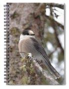 Get My Good Side-grey Jay Spiral Notebook