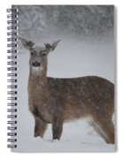 Getting Deeper Spiral Notebook