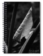 Getting Started Spiral Notebook