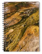 Geyser Basin Springs 2 Spiral Notebook