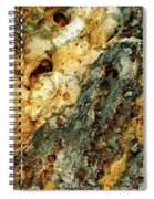 Geyser Paisley Art Spiral Notebook