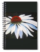 Ghost Cone Spiral Notebook