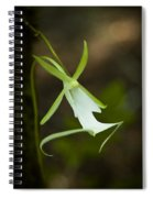 Ghost Orchid  Spiral Notebook