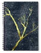 Ghost Tree Spiral Notebook