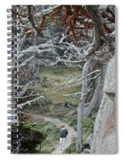 Ghost Trees Spiral Notebook