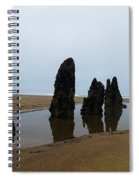 Ghost Trees Of Neskowin  Spiral Notebook