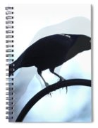 Ghosted Grackle Spiral Notebook