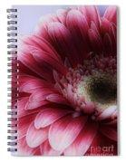 Ghostly Gerbera Spiral Notebook