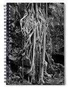 Ghostly Roots - Bw Spiral Notebook