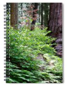 Giant Among The Forest Spiral Notebook