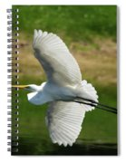 Giant Egret Grace Spiral Notebook