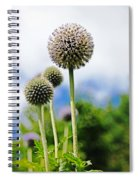 Giant Globe Thistle Spiral Notebook