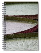 Giant Lilly Pads Spiral Notebook