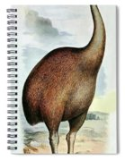 Giant Moa Dinornis Ingens, Cenozoic Bird Spiral Notebook