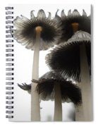 Giant Mushrooms In June Spiral Notebook