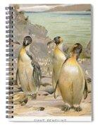 Giant Penguins, C1900 Spiral Notebook