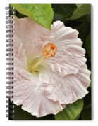 Giant Pink Hibiscus I Spiral Notebook