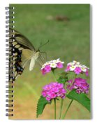Giant Swallowtail Butterfly II Spiral Notebook
