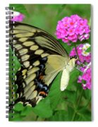 Giant Swallowtail Butterfly  IIi Spiral Notebook