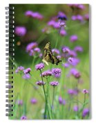 Giant Swallowtail Butterfly In Purple Field Spiral Notebook