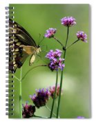 Giant Swallowtail Butterfly On Verbena Spiral Notebook