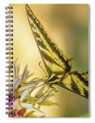 Giant Swallowtail With Yosemite Showy Milkweed Spiral Notebook