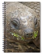 Giant Tortoise Spiral Notebook