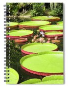 Giant Water Lily Platters Spiral Notebook
