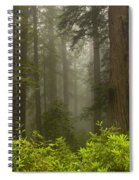 Giants In The Mist Spiral Notebook