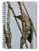 Gila Woodpecker Spiral Notebook