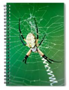 Gilded Silver-face Spiral Notebook