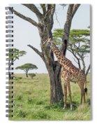 Giraffe 2 Spiral Notebook