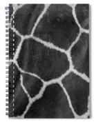 Giraffe Black And White Spiral Notebook