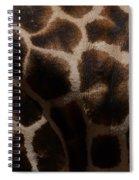Giraffe Patterns  Spiral Notebook