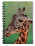 Giraffe Square Painted Spiral Notebook