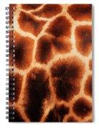 Giraffe Texture Spiral Notebook