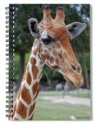 Giraffe Youth Spiral Notebook