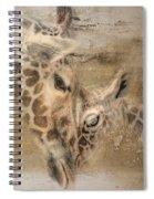 Giraffes, Big And Small Spiral Notebook