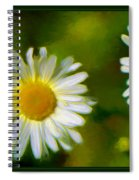 Give Me Daisy In Color Spiral Notebook