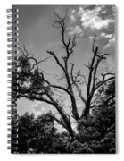 Give Me Life Spiral Notebook