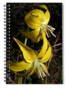 Glacier Lily 2 Spiral Notebook
