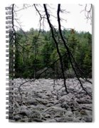 Glacier Rock 1 Spiral Notebook
