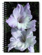 Glad Purple Perfection Spiral Notebook