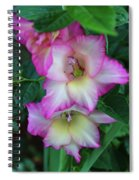 Gladiolas Blooming With Ripening Blueberries Spiral Notebook