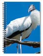 Glamorous Wood Stork Spiral Notebook