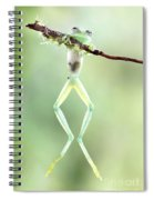Glass Frog Spiral Notebook