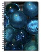 Glass Grapes Spiral Notebook
